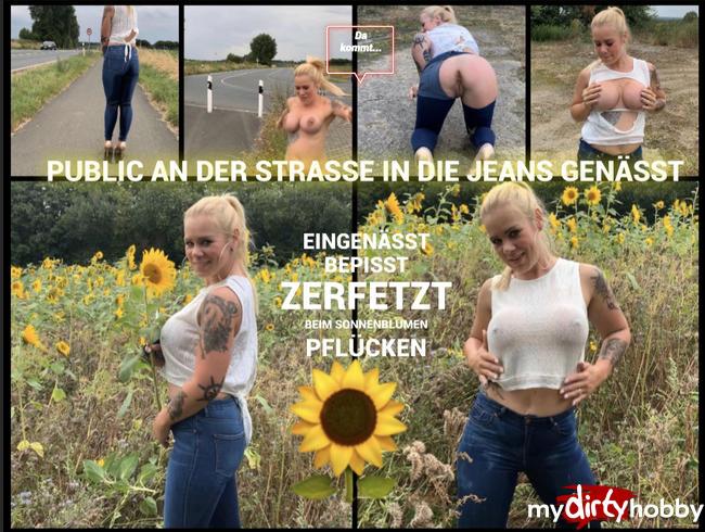 devil-sophie - Public an der Straße in die Jeans genässt - bepisst und zerfetzt beim Sonnenblumenpflücken
