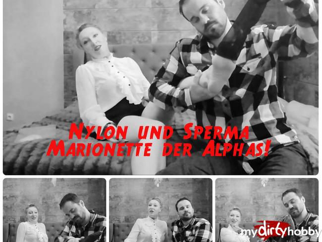 Video Thumbnail Nylon & Sperma Marionette der Alphas!