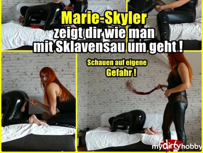 Video Thumbnail Frau Skyler zeigt dir wie man mit Sklavenschweinen umgeht!