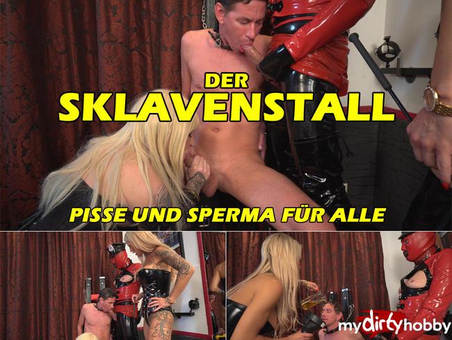DIE-BI-HURE - Der Sklavenstall in Action