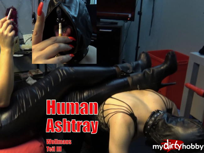 Video Thumbnail Mein Human Ashtray - Wollmaus Teil III