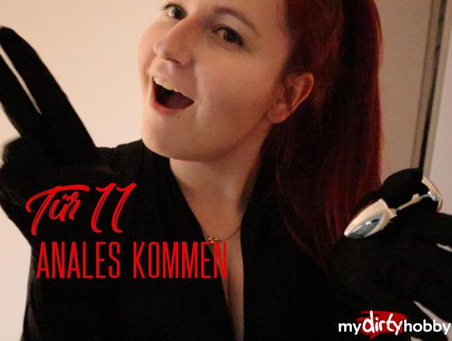 Video Thumbnail Tür 11: Anales Kommen
