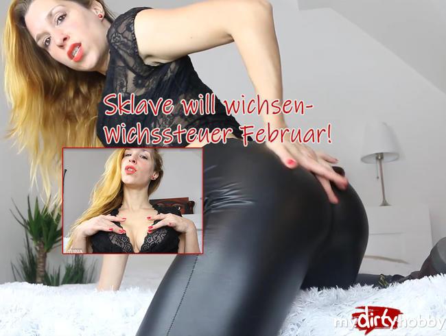 Video Thumbnail Sklave will wichsen - Wichssteuer Februar