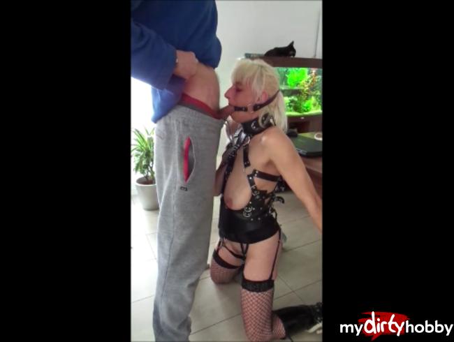 Video Thumbnail Bondage oral Ringknebel