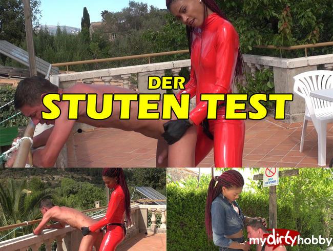 DIE-BI-HURE - DER STUTEN TEST