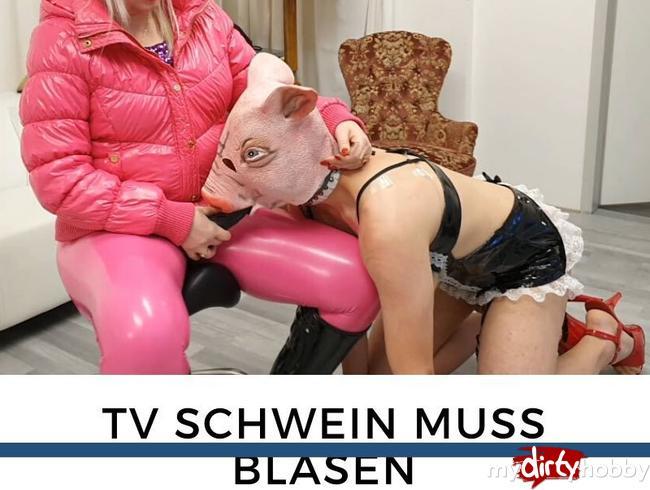 Video Thumbnail TV Schwein muss blasen