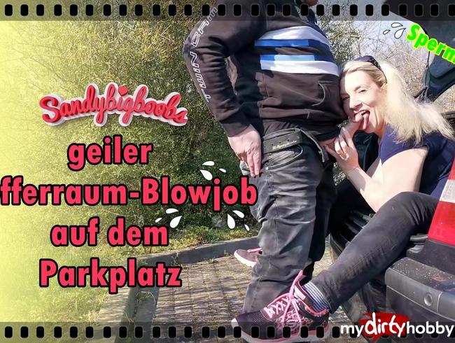 Video Thumbnail geiler Kofferraum-Blowjob auf Parklplatz