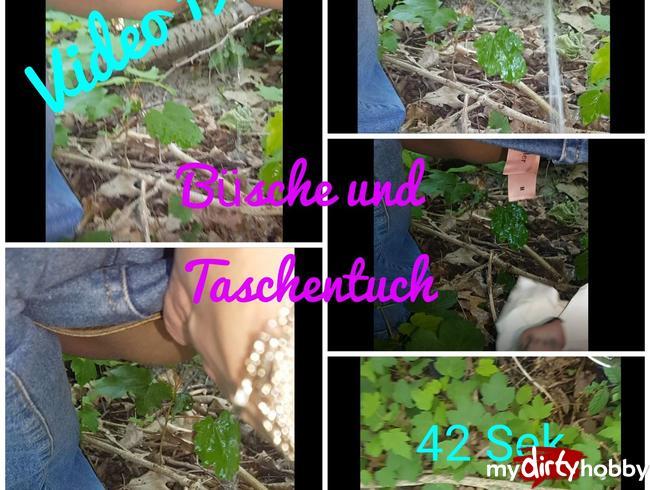 Video Thumbnail Büsche und Taschentuch