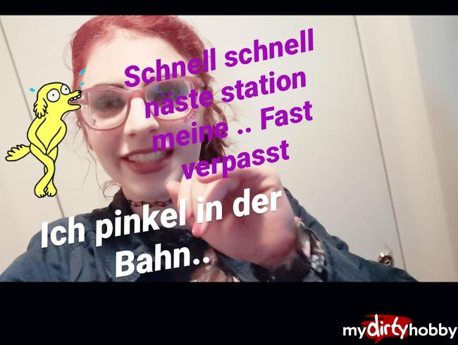 Video Thumbnail Ich pisse in der Bahn!