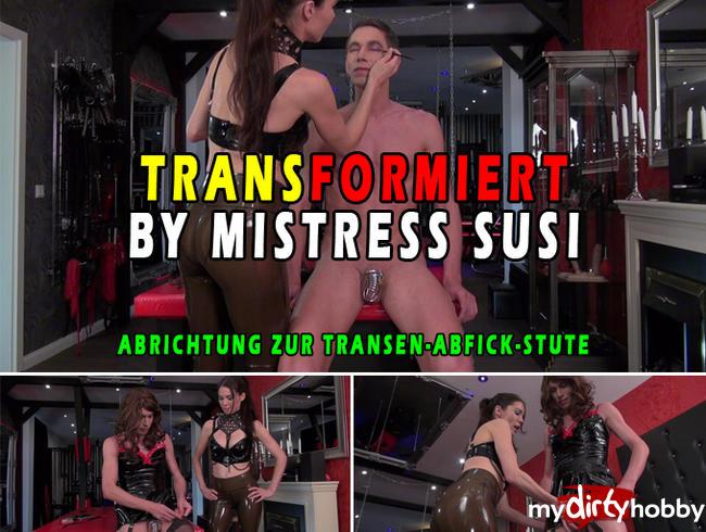 Video Thumbnail ABRICHTUNG ZUR TRANSEN-ABFICK-STUTE