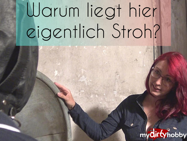 Video Thumbnail Warum liegt hier eigentlich Stroh?