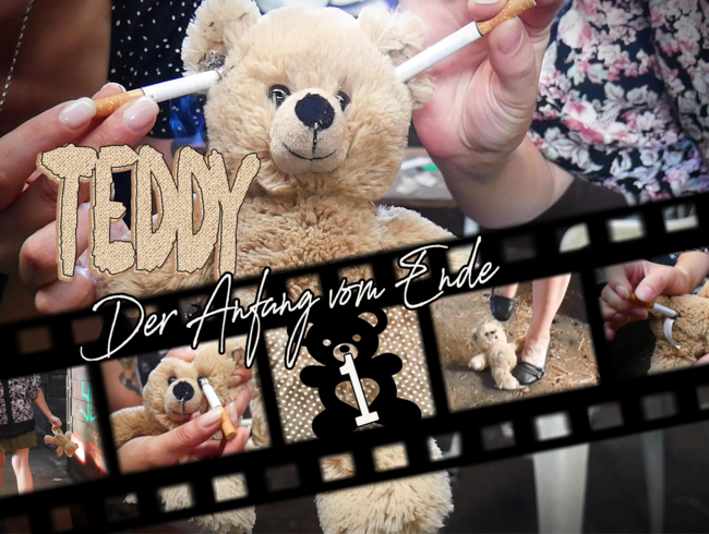 Video Thumbnail Teddy 1 - Der Anfang vom Ende