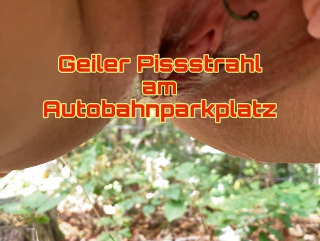 Video Thumbnail Geiler Pissstrahl am Autobahnparkplatz