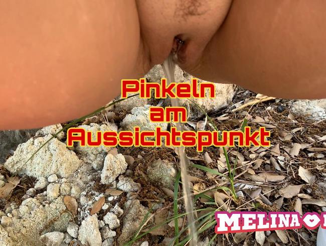 Video Thumbnail Pinkeln am Aussichtspunkt