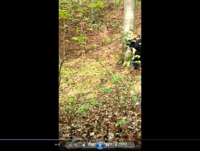 Video Thumbnail Neulich im Wald