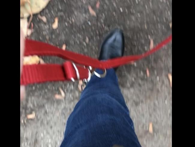 Video Thumbnail Der Sklave an meiner Leine