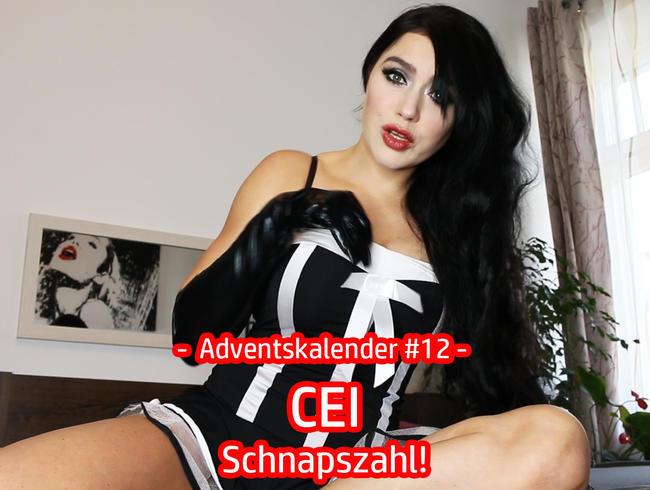 Video Thumbnail Adventskalender #12 – CEI – Schnapszahl!