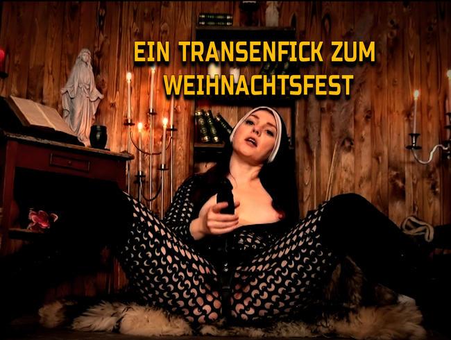 Video Thumbnail Ein Transenfick zum Weihnachtsfest !
