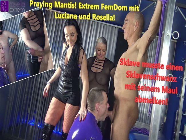 Video Thumbnail Praying Mantis! Extrem FemDom mit Luciana und Rosella!
