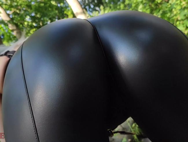Video Thumbnail Der Unterholzspanner