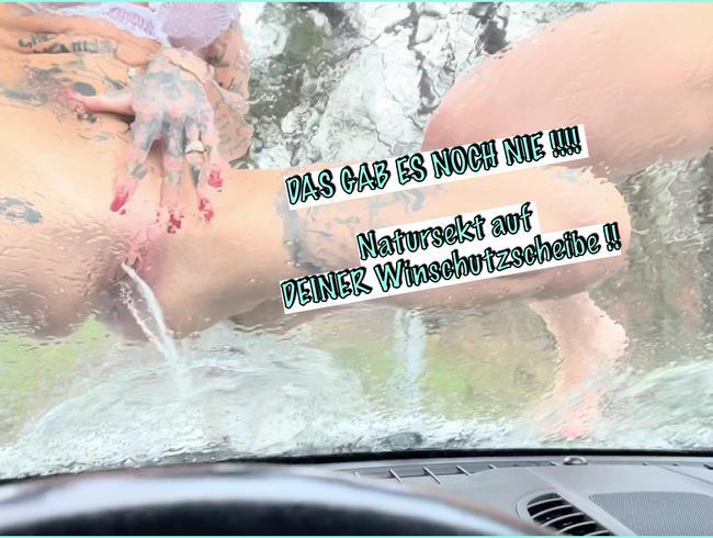 Video Thumbnail Das gab es NOCH NIE !!! Natursekt auf deiner Windschutzscheibe !!!