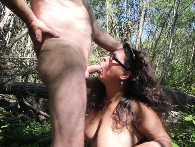 Video Thumbnail Blasen im Wald