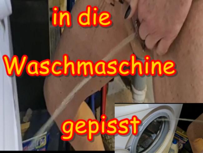 Video Thumbnail Nachbarin in die Waschmaschine gepisst,