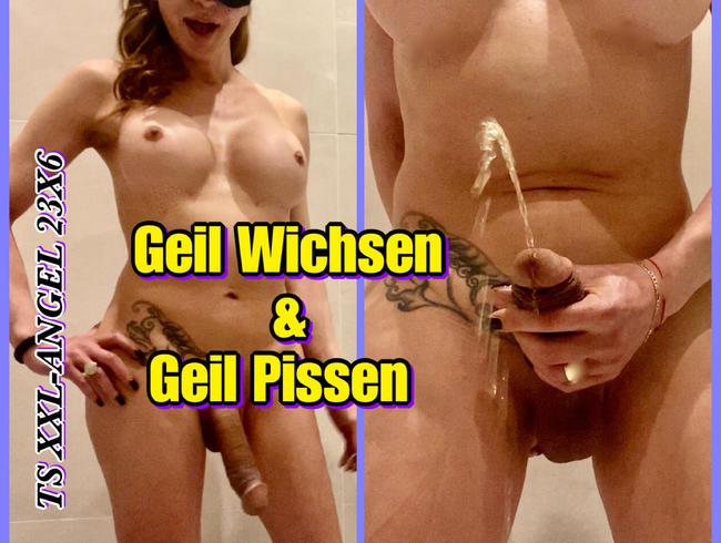 Video Thumbnail TSXXL-ANGEL23X6 Geil Wichsen & Geil Pissen
