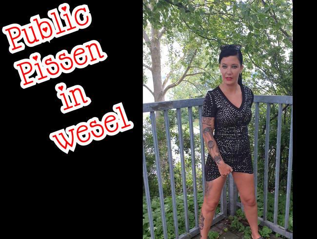 Video Thumbnail Public Pissen in wesel