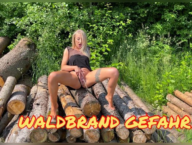 Video Thumbnail WALDBRAND GEFAHR