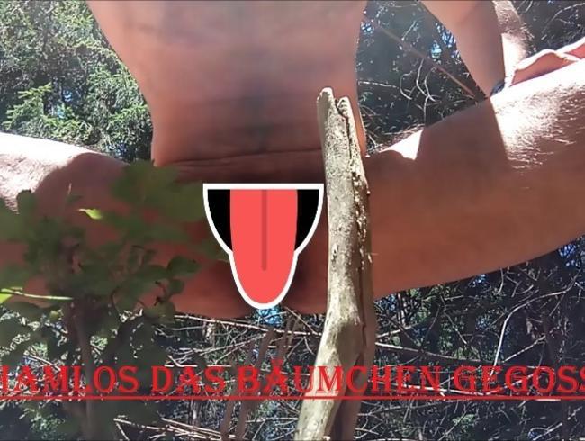 Video Thumbnail Schamlos das Bäumchen gegossen!