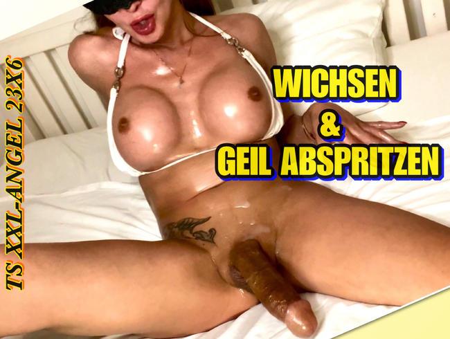 Video Thumbnail TSXXL-ANGEL23X6  WICHSEN & GEIL ABSPRITZEN