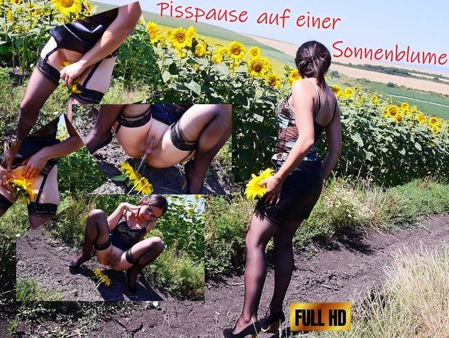 Video Thumbnail Pisspause auf einer Sonnenblume