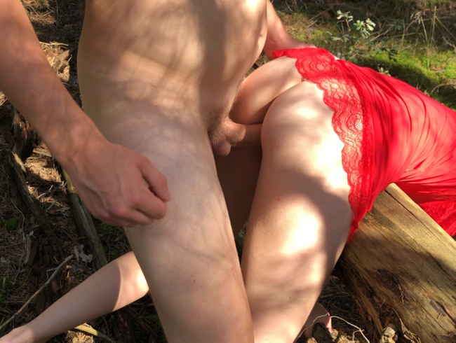 Video Thumbnail 18 jährige im Wald durchgefickt