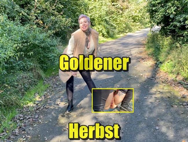 Video Thumbnail Goldener Herbst